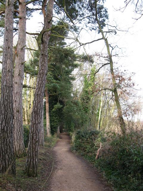 Fleet Pond path