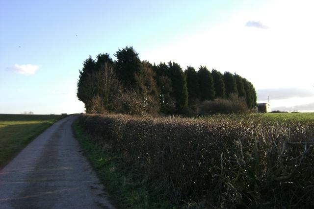 Drive to Lower Grange