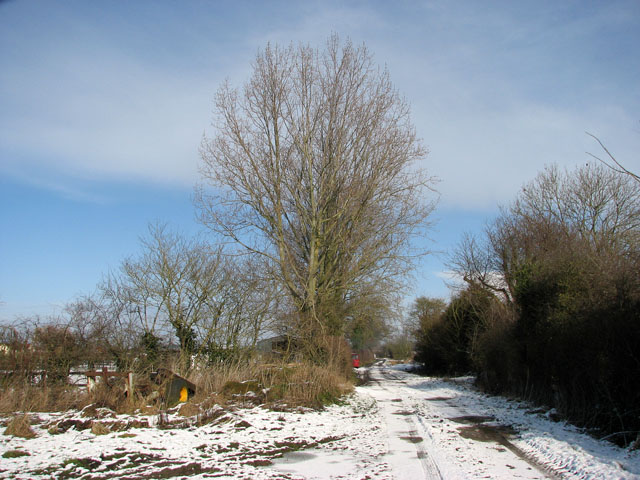 Highfield Lane approaching Highfield Farm