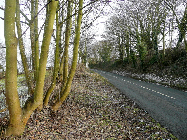 B4221 between Phocle Green and Upton Bishop