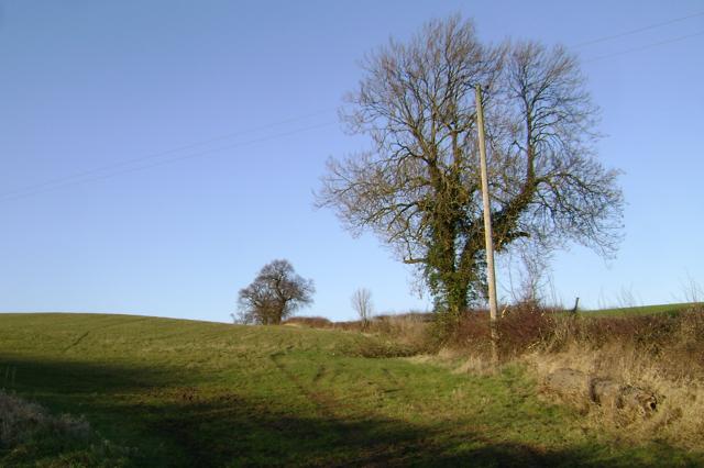 Hillside above Lower Grange
