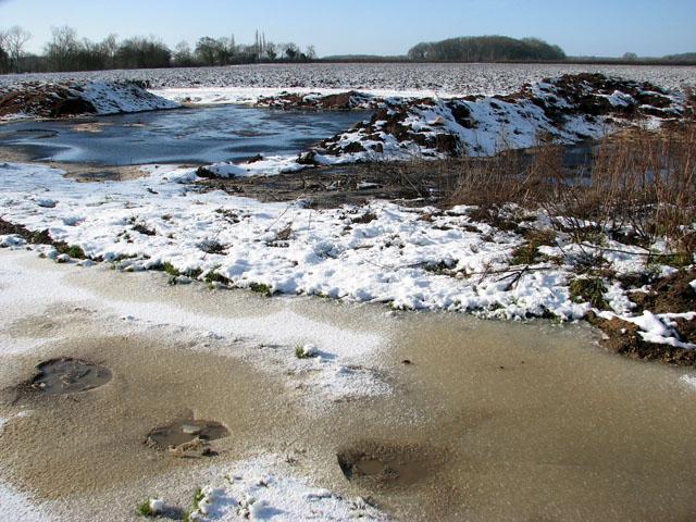 Frozen puddles on Highfield Lane