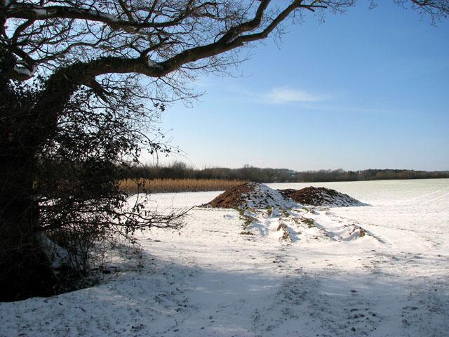 Snowy field west of Highfield Lane