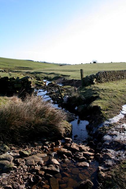 Beck, Lindley Moor