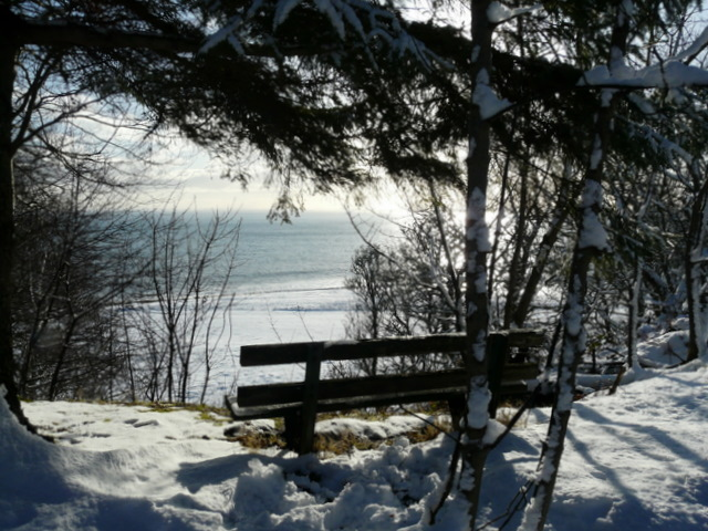 Bench with a sea view, Dunrobin Woods