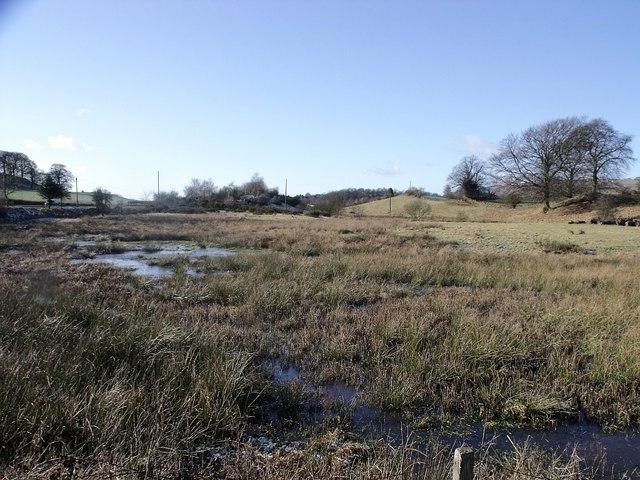 Wetland between drumlins