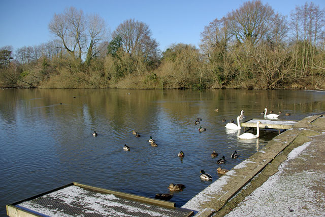 By the car park, Hedgecourt Lake