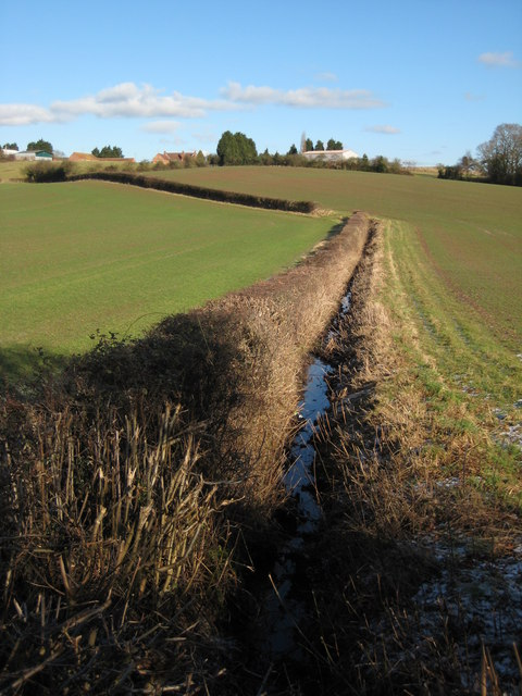 Hedge and ditch