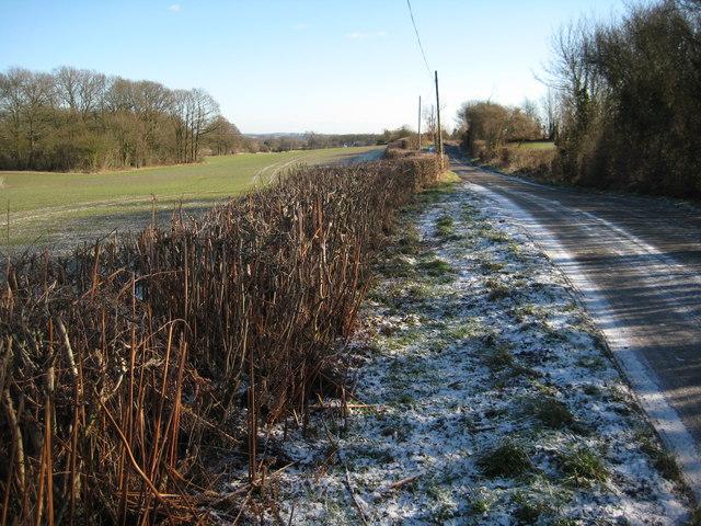 Country road near Berrow Green