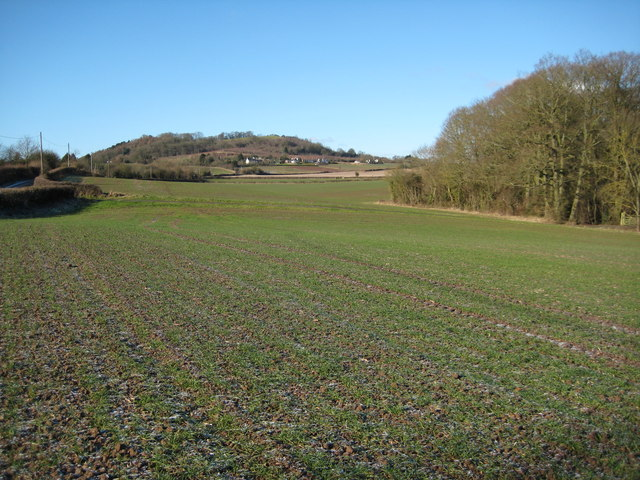 Berrow Hill