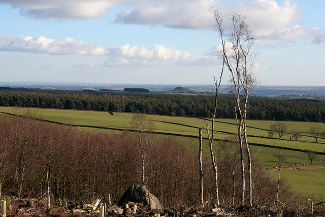 View from Norwood Edge