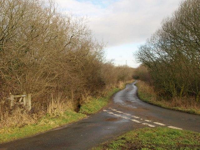 Lane across Lowerton Moor