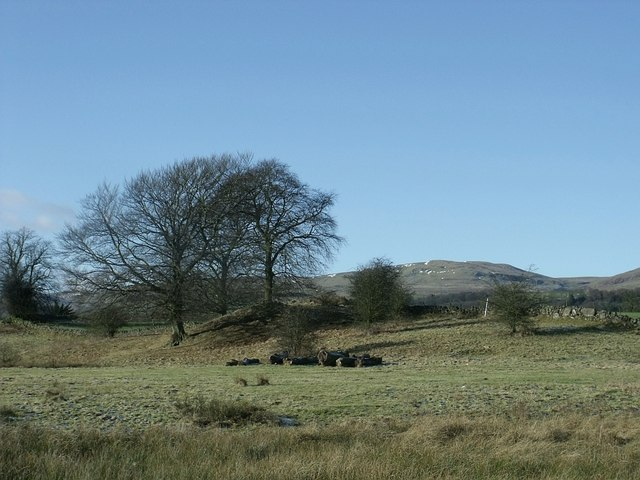 On a ridge at Townhead Farm