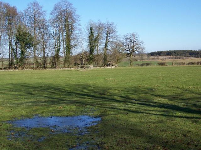 Pasture near Quenington