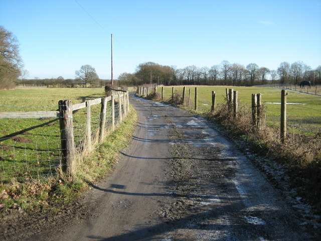 Road to Candleford Nurseries