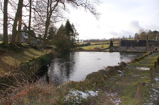 Pond at Tissington