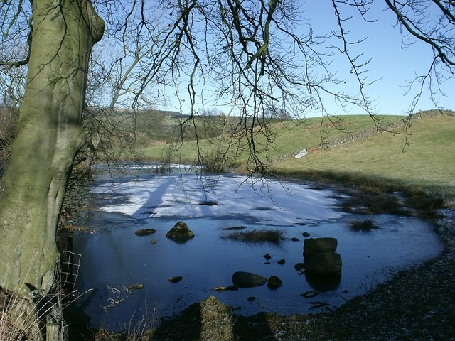 Frozen Pond near Banton