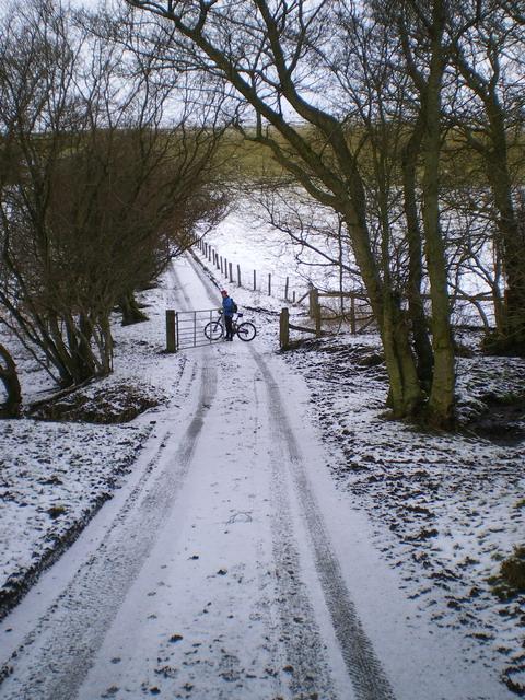 Snowy lane above Coates