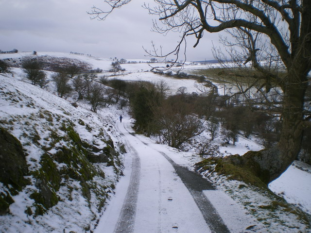 Lane below Medlicott