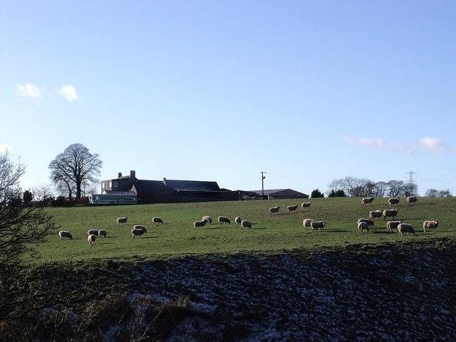 Easter Auchinrivoch Farm
