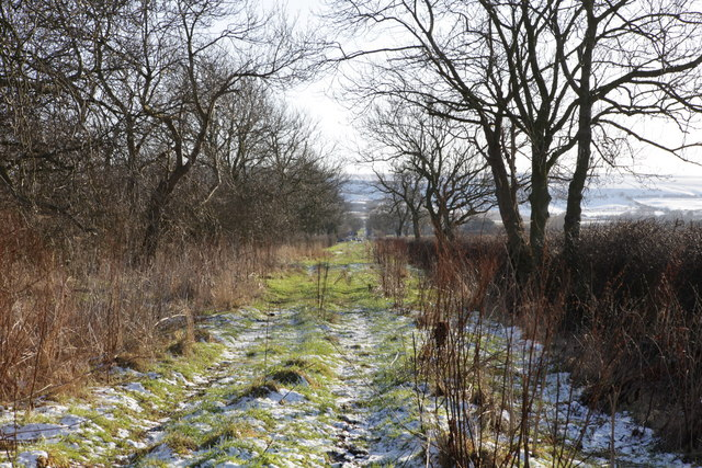 East Heslerton Lane