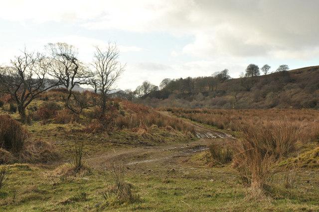 Rough track near Turnalt