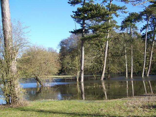 Flood water, Quenington