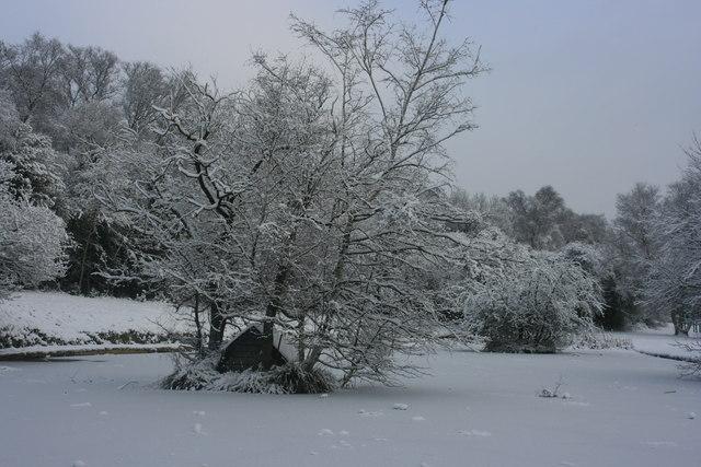 Brighton Lake: Frozen