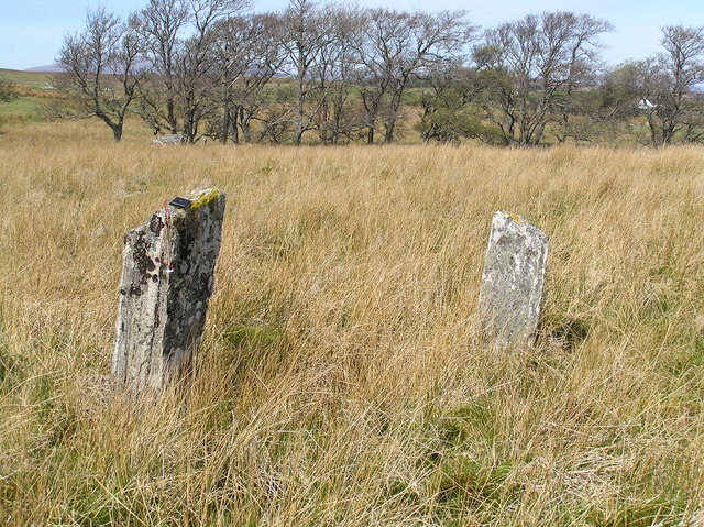 Standing stones in boggy ground east of Clebrig Farm, Altnaharra.