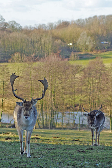 Weald Park Residents