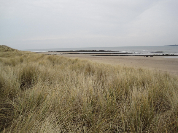 St Aidan's Dunes and Beach