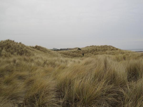 St Aidan's Dunes