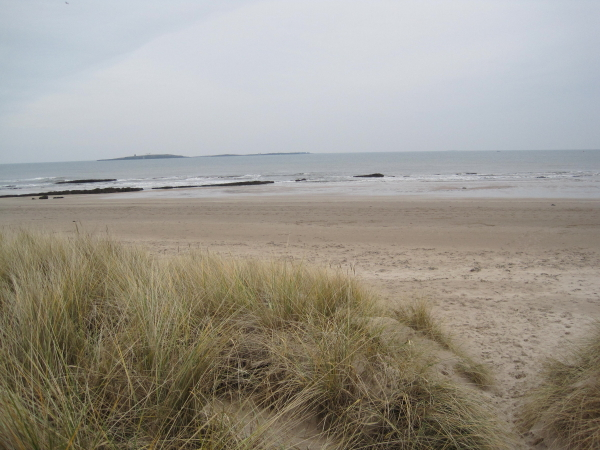 Beach and looking towards the Farne Islands