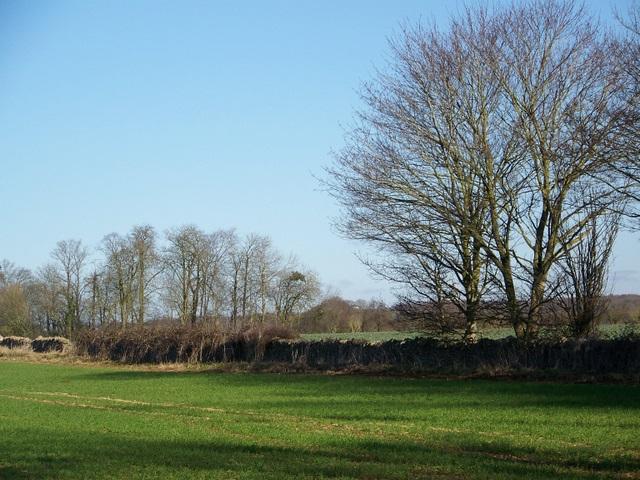 Arable land near Hatherop
