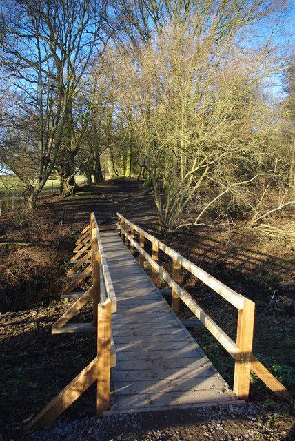 Bridge to Shepherd's Spinney