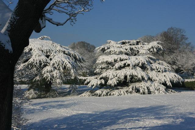 Snow scene, Calverley Park
