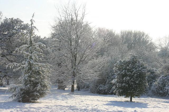 Calverley Park: snow scene