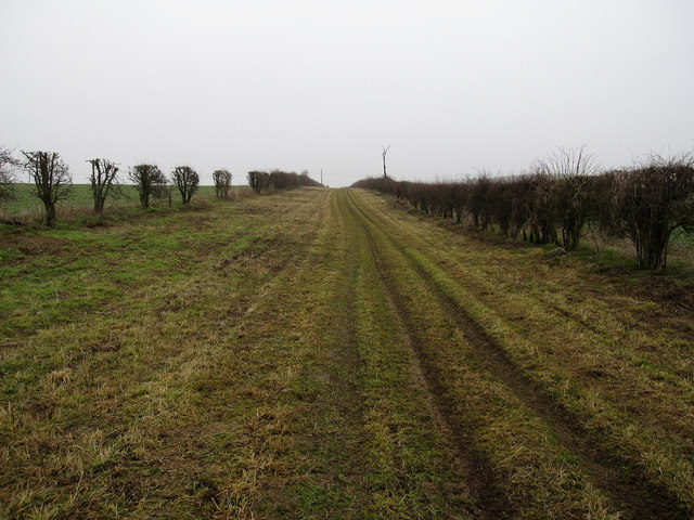 Winter byway