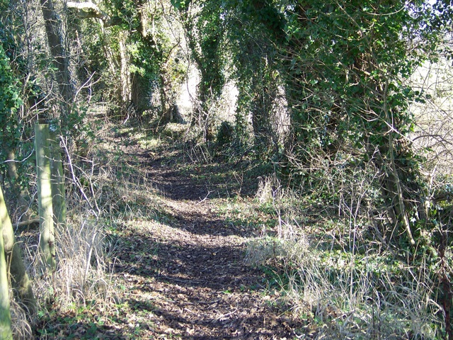 Bridleway near Fyfield