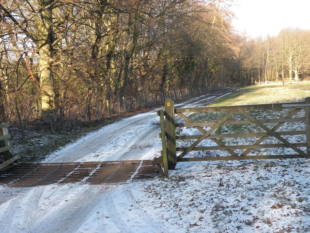 Bridleway leading to Low Butterby Farm