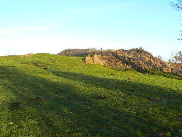 Molehills on a slightly bigger hill