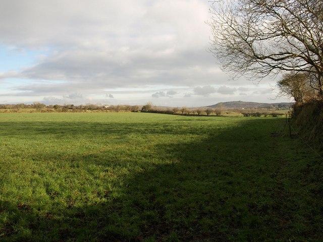 Field near Little Trevellion
