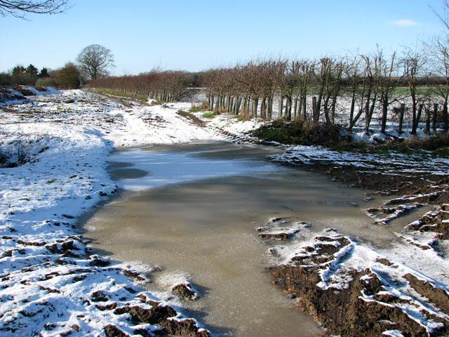 Frozen puddle on Highfield Lane