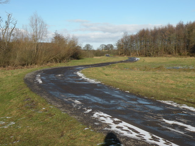 Road Leading to Low Butterby Farm
