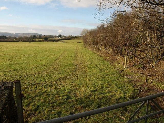 Field and field boundary near Little Trevellion