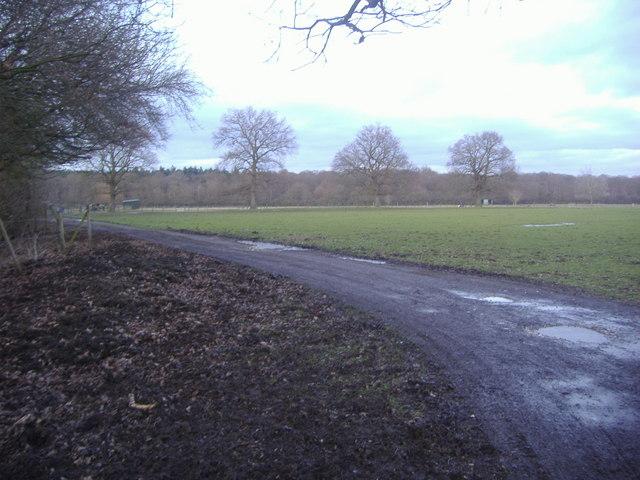 Public footpath, Effingham