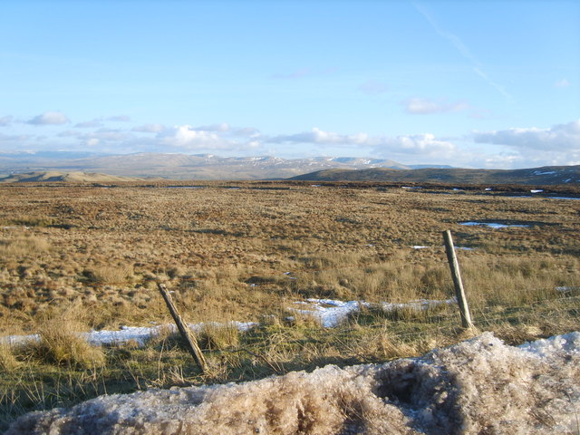 On Shap Summit