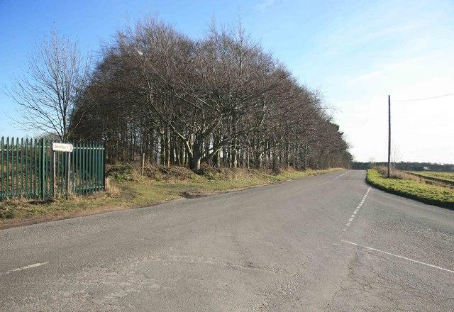 Serlby road