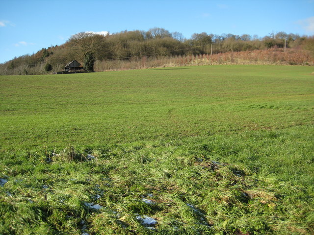Berrow Hill