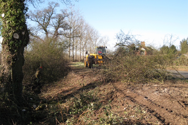 Hedge-cutting, Offchurch Road